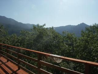 Beautiful view of the San Jacinto Mtns Overlooking Idyllwild CA - Idyllwild vacation rentals