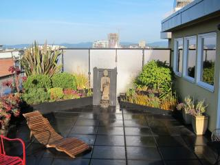 Two Storey Heritage Penthouse in the Heart of Victoria - Victoria vacation rentals