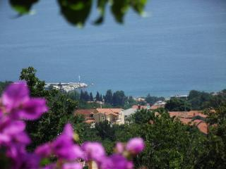 Apartment Babiloni near Opatija - Icici vacation rentals
