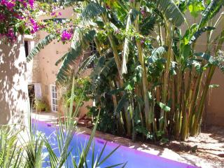 DREAM CASTLE IN TAROUDANT - Taroudant vacation rentals