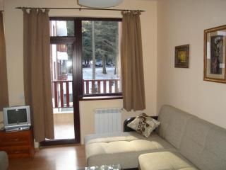 Flora Violet 414 Studio Apartment - Borovets vacation rentals
