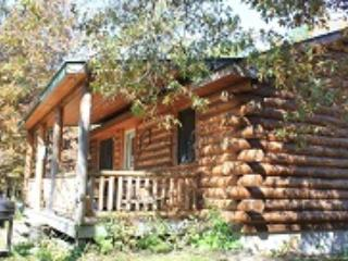 Log Cabins - Pet friendly, near Castle Rock Lake - New Lisbon vacation rentals