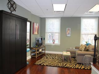 Brand new, bright  studio in the heart of Boston - Boston vacation rentals