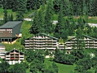 Utoring Ringstrasse ~ RA10639 - Leukerbad vacation rentals
