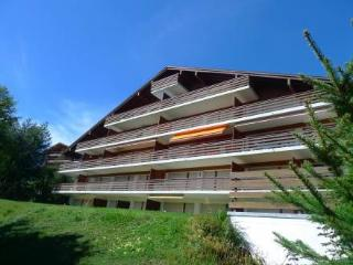 Crans Colline ~ RA10760 - Valais vacation rentals