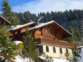 Wilerhorn ~ RA10985 - Zurich Region vacation rentals