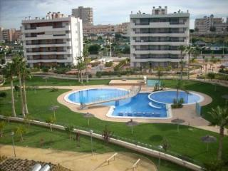 Playa de Arenales 2 dorm. 6 pax ~ RA22572 - El Altet vacation rentals