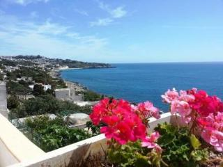 Sun & sea terrace ~ RA36064 - Castro vacation rentals