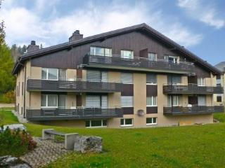 Apt 20, Haus D ~ RA12239 - Eastern Switzerland vacation rentals