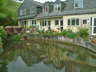 Ducks Dive ~ RA29969 - Looe vacation rentals