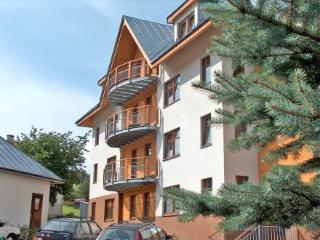 Horni Rokytnice ~ RA12500 - Harrachov vacation rentals