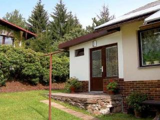 Dolni ~ RA12499 - Harrachov vacation rentals