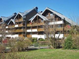 Le Septimontain ~ RA28042 - Samoens vacation rentals