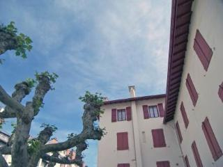 Résidence Louis XIV ~ RA25971 - Basque Country vacation rentals