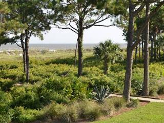 50 Ocean Club Villa - Hilton Head vacation rentals
