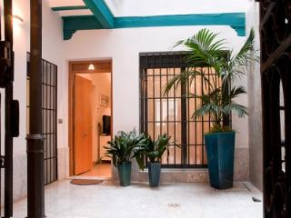 Top class apartment in the center of Seville - Seville vacation rentals