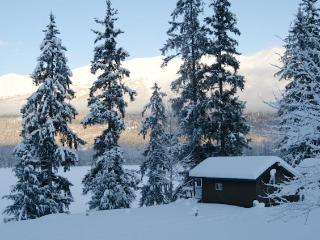 Swan View Rental Cabins - Haines vacation rentals