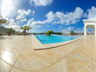 Ocassa Villa - Little Harbour vacation rentals