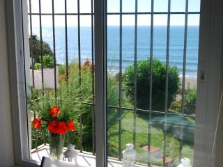 In Front of the beach Mijas Costa, WIFI, terrace, air - Rincon de la Victoria vacation rentals