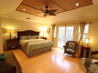 Renovated - Cute Studio Apartment; Walk to  Beach! - Paia vacation rentals