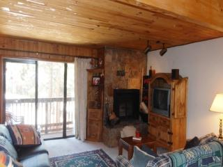 Windchime 204 - Angel Fire vacation rentals