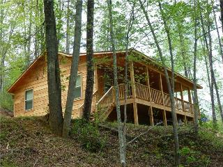 Lazy Timez - Bryson City vacation rentals