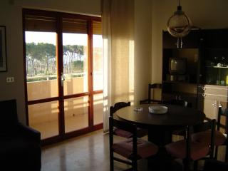 Pineto ITA Apartment 50m from the beach - seaview - Pineto vacation rentals