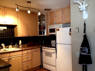 Fun, Shabby-Chic Modern Vintage with Views of the Slopes-Mountain 2 bed w/ Jacuzzi after your day! - Brian Head vacation rentals