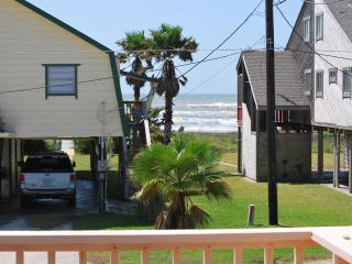The 'Sea Flower' a Great Beach House - Surfside Beach vacation rentals