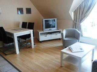 LLAG Luxury Vacation Apartment in Schleiden - renovated, modern, bright (# 4684) - North Rhine-Westphalia vacation rentals