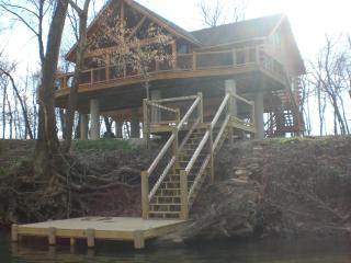 Riverfront Cabin on Current River, Van Buren, MO - Van Buren vacation rentals