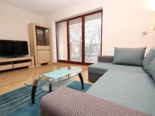 City apartments - Torunska St. - Gdansk vacation rentals