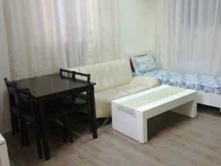 2-rooms Appatment in Tel Aviv - Ramat Gan vacation rentals