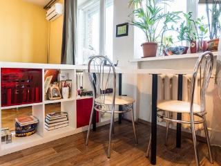 Studio on the river side, center - Central Russia vacation rentals