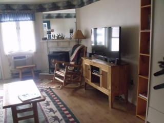 Spacious 1 bdr Condo close to Loon Mountain with King Bed & Queen Murphy Bed - Lincoln vacation rentals