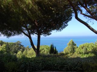 Spectacular Ocean View Swimming Pool Villa - Porto Santo Stefano vacation rentals