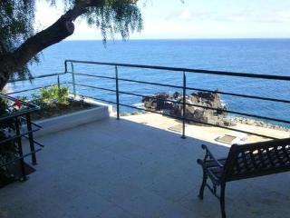 Plot of 500 sqm completely fenced -  with private terrace and sea view - PT-1075609-Funchal - Funchal vacation rentals