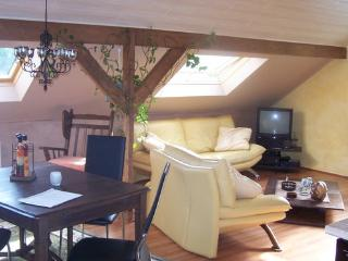Nice apartment for 2-5 persons in a calm situation - BE-819-Lontzen - Eupen - Welkenraedt vacation rentals