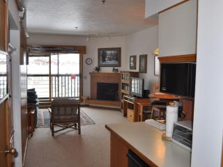 Great Mountain Location - Lower Summer Rates! - Steamboat Springs vacation rentals