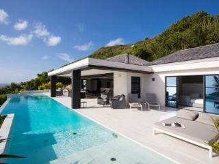 Brand new villa Rose Dog on quiet hillside with ocean view bedrooms & infinity pool - Terres Basses vacation rentals