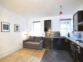 ***LAST MINUTE***2 bedroom  6 Guests Central ***Covent Garden Modern*** - London vacation rentals