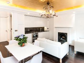 ***Gorgeous 2 bedroom Apartment ***Trafalgar House - London vacation rentals