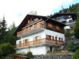 Sleeps up to 14 or separated 2 apartments MORZINE***SPECIAL OFFER*** - Rhone-Alpes vacation rentals