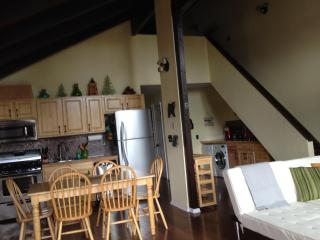 Fully Remodeled ~ Pet Friendly ~ Minutes From Ski Lift ~ Last minute specials - Stateline vacation rentals