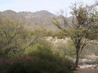 2 Bedrm First Floor with Great Mountain Views Rennovated- Furnished Nov 2013 - Tucson vacation rentals