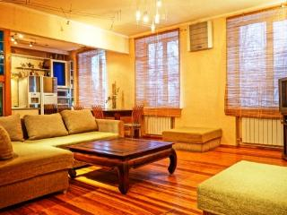 The creative 2 rooms apartment in a historical part of Kyiv. Jacuzzi - Kiev vacation rentals