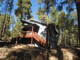 Cabin In The Pines - 3+ Acres near Skiing & Hiking - Flagstaff vacation rentals