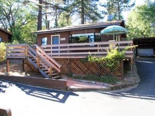 Acorn Cottage - Idyllwild vacation rentals