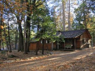 Naughty Pine - Idyllwild vacation rentals