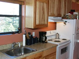 Lonesome Bear - Ruidoso vacation rentals